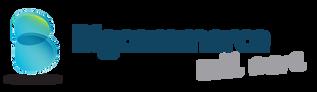 EYEMAGINE BigCommerce Partner