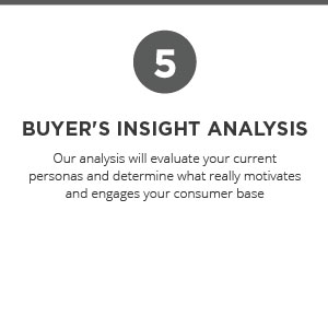 Buyer's Insight Analysis
