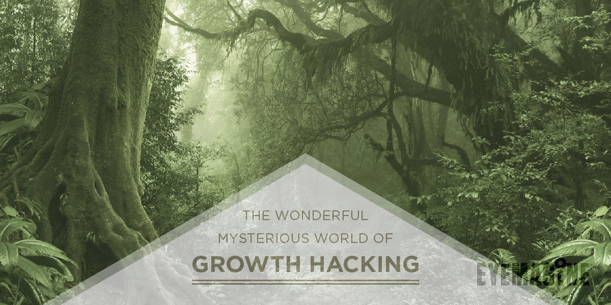 The Wonderful Mysterious World of Growth Hacking